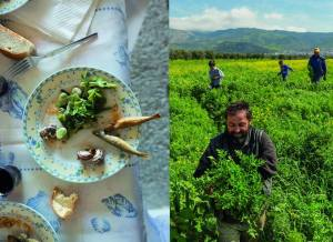 Seeds&Chips ha ospitato una mostra della NatGeo sul tema food Credits Fb page